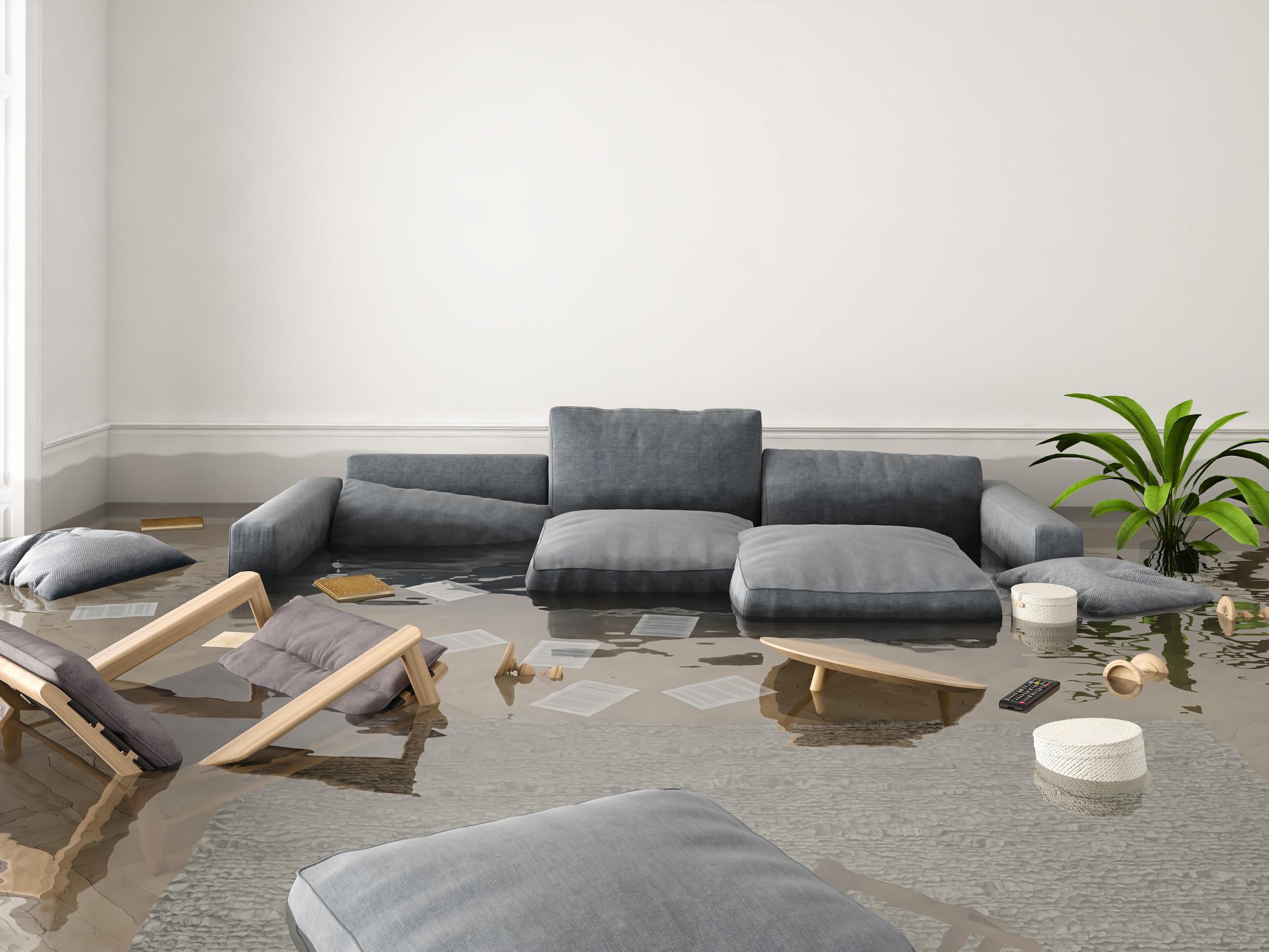 Water Reoval_Flood