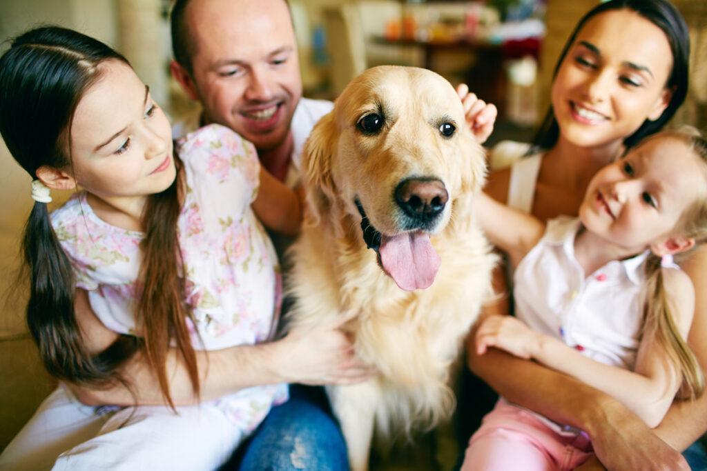 pet odor - family